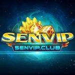 Tải SenVip Club – Game Đổi Thưởng Huyền Thoại Đã Trở Lại 2020